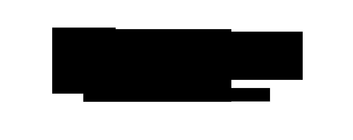 logo Francois Bouche Consultant PNG